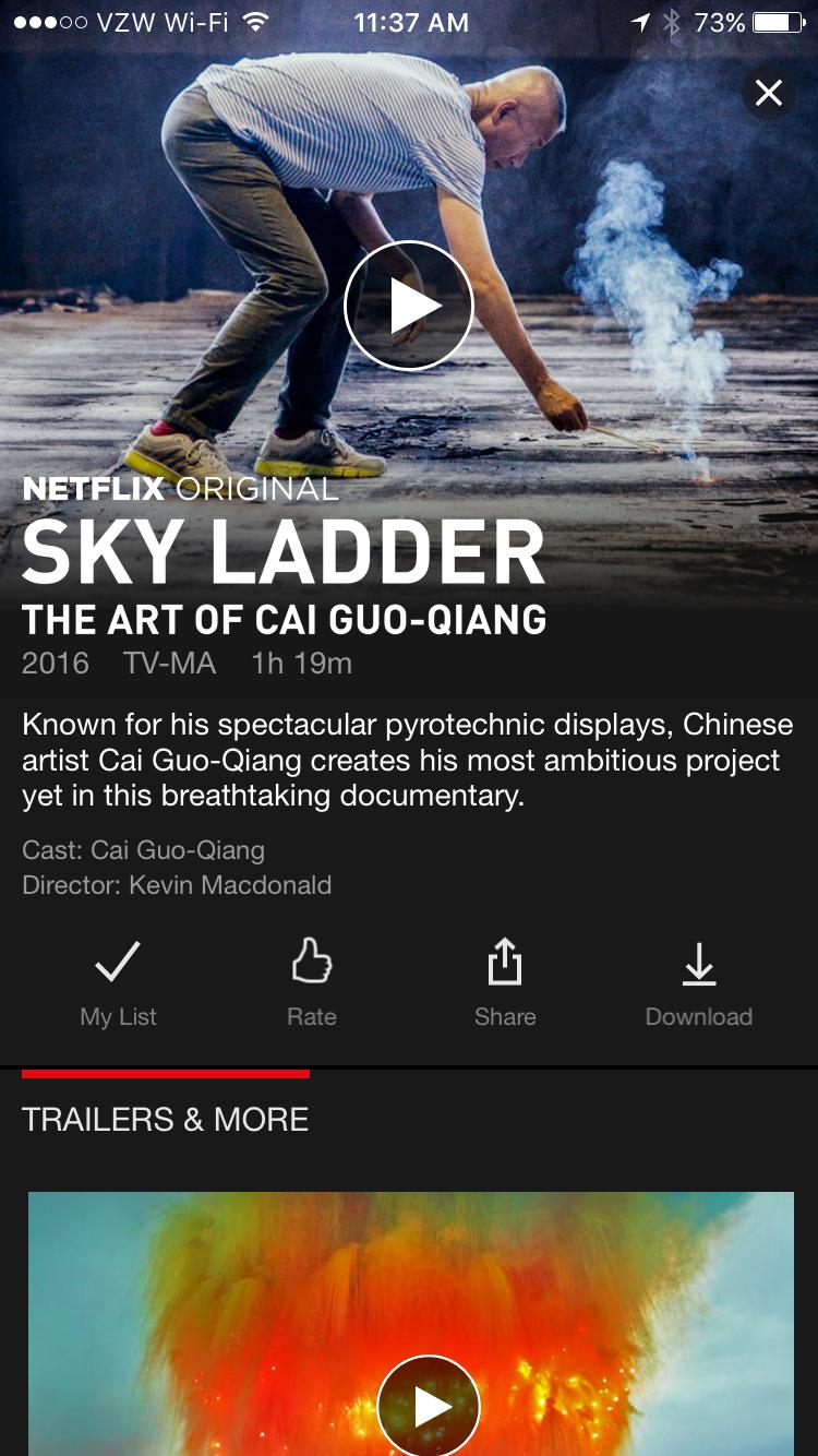 Netflix Video Details Screen iPhone